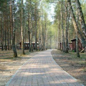 Kompleks Wypoczynkowy ZACISZE – Oferujemy noclegi w domkach letniskowych znajdujących się w lesie sosnowym, położonych w niewielkiej wsi nad jeziorem.