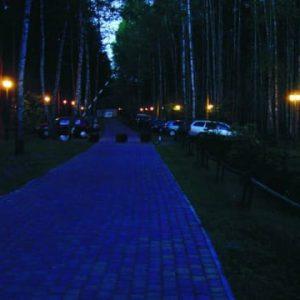 Kompleks Wypoczynkowy ZACISZE – Nasz obszerny, ogrodzony teren zaprasza na wieczorne spacery oświetloną ścieżką otoczoną drzewami sosnowymi.